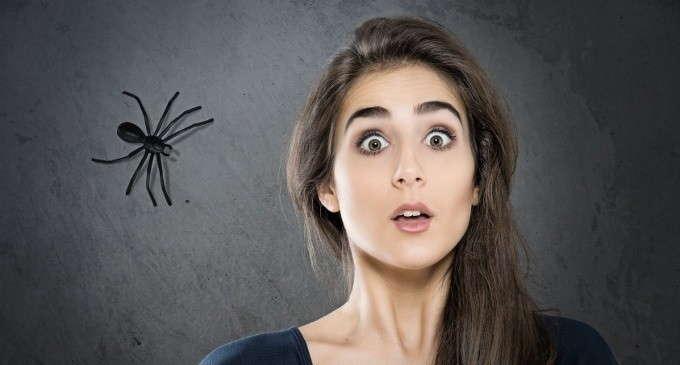 curiosità sulle fobie